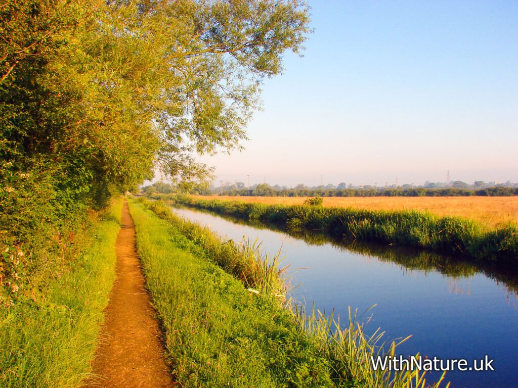 Aylesbury Arm, Grand Union Canal