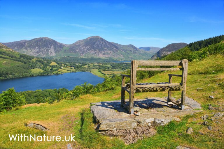 Overlooking Loweswater in the English Countryside