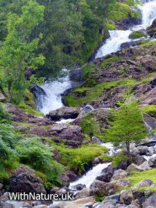 Waterfall in the Lake District National Park