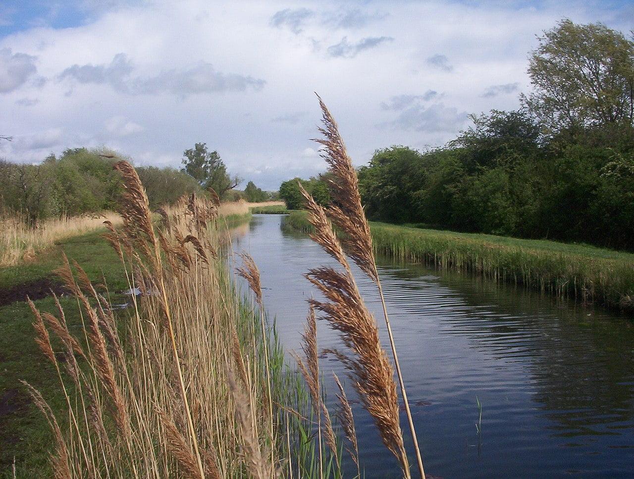 Wicken Lode at Wicken Fen, Cambridgeshire