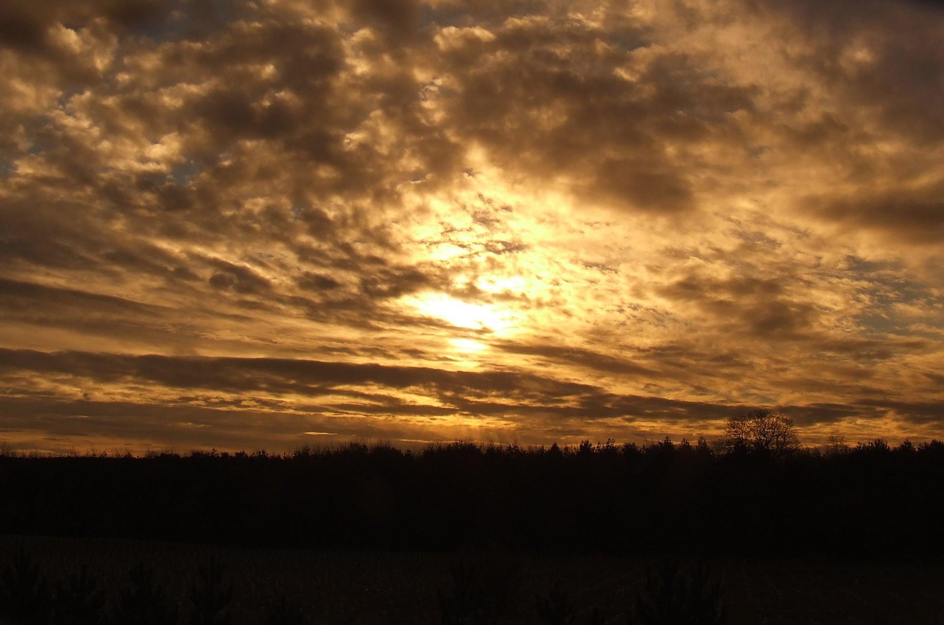 Sherwood Sunset