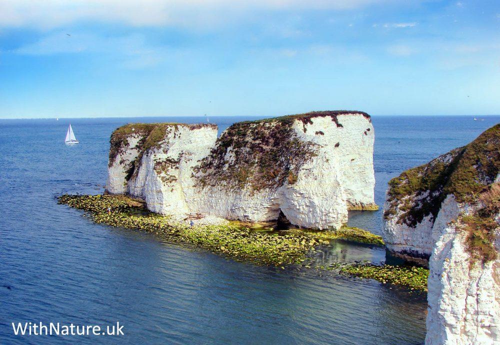 Old Harry's Rocks, Dorset, England