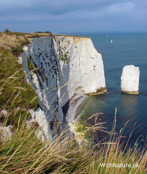 The Dorset Coast, South England