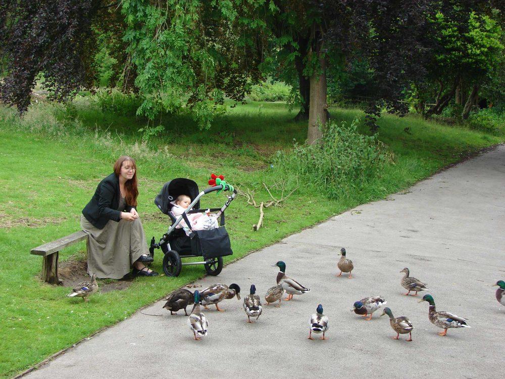 A City Park, Birmingham
