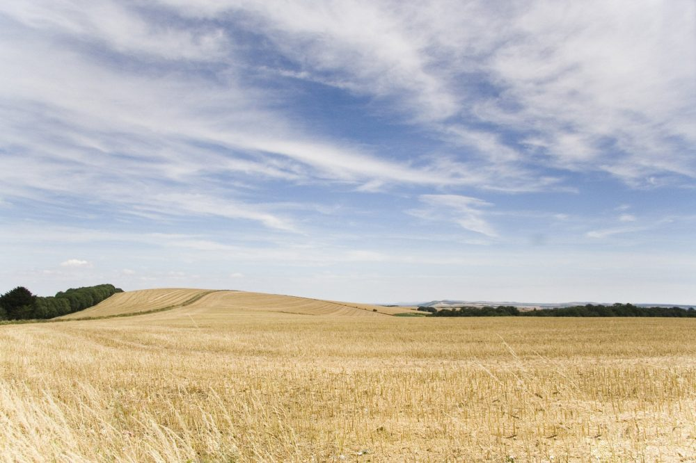 West Sussex walk by mailsparky from FreeImages