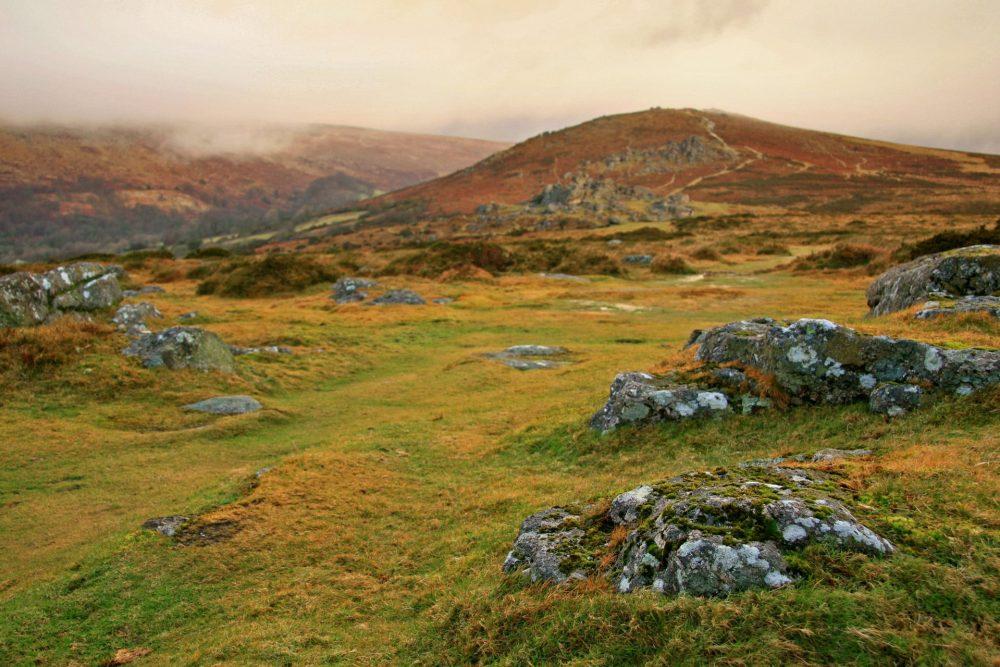 Dartmoor by Ali Taylor, FreeImages