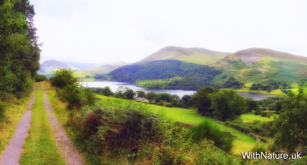 Mosser Track in the North West Lake District